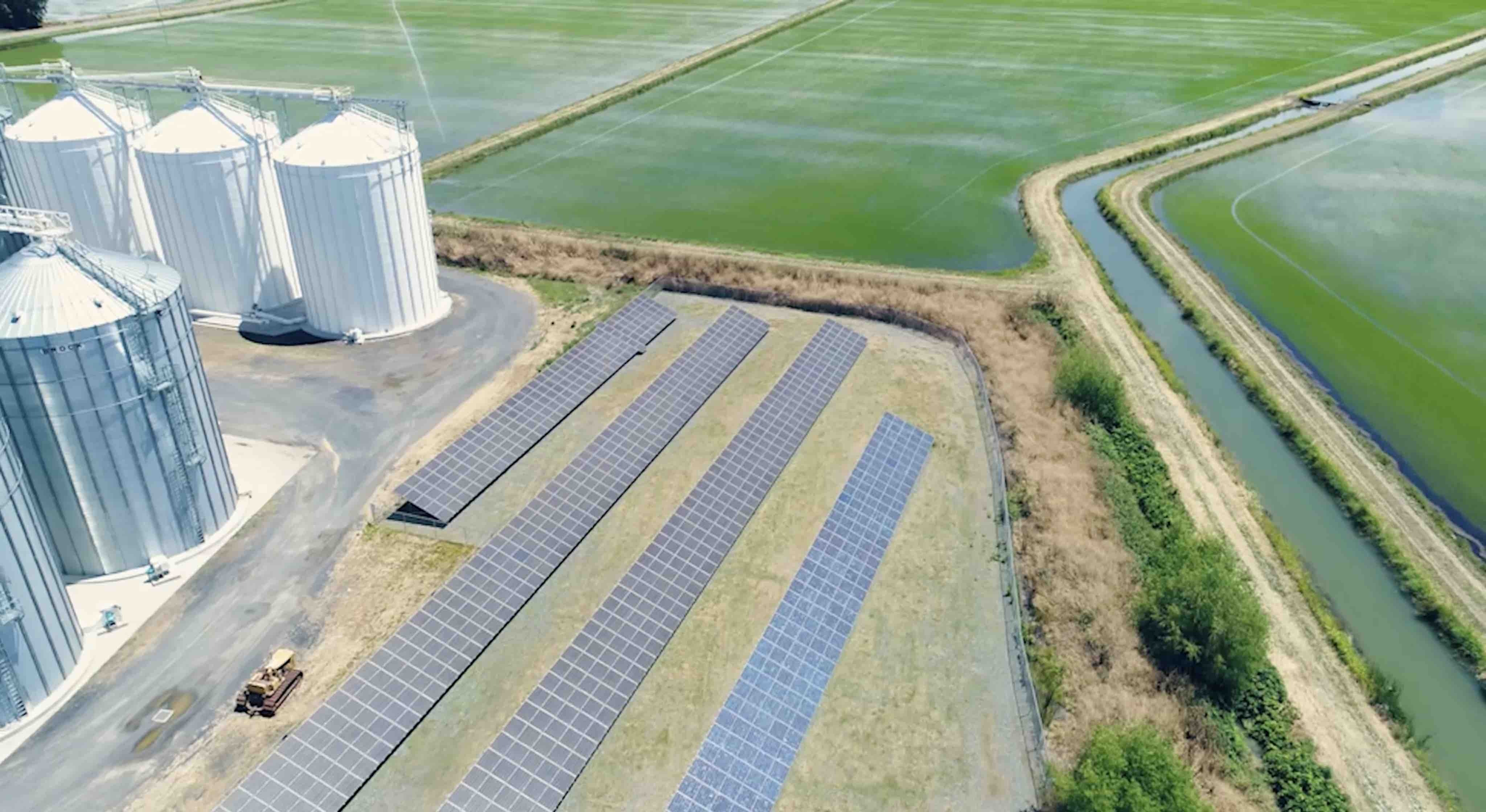 Solar panels, rice bins, and green rice fields at Lundberg Family Farms.