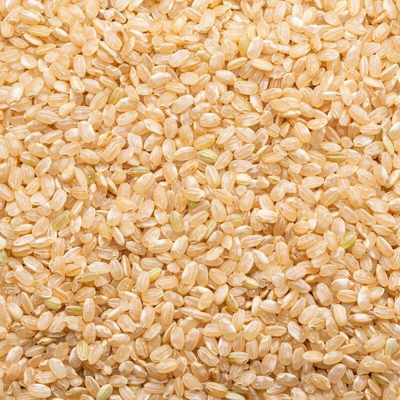 Organic Sprouted Short Grain Brown Rice